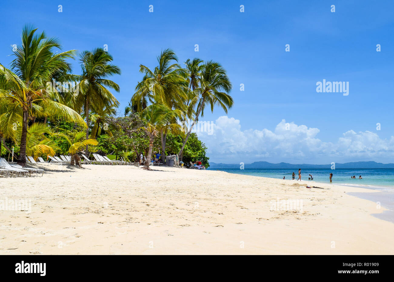 Paradise beach in caribbean sea, white beach, plams and turquoise ocean, some tourists at the beach in the dominican republic - Stock Image