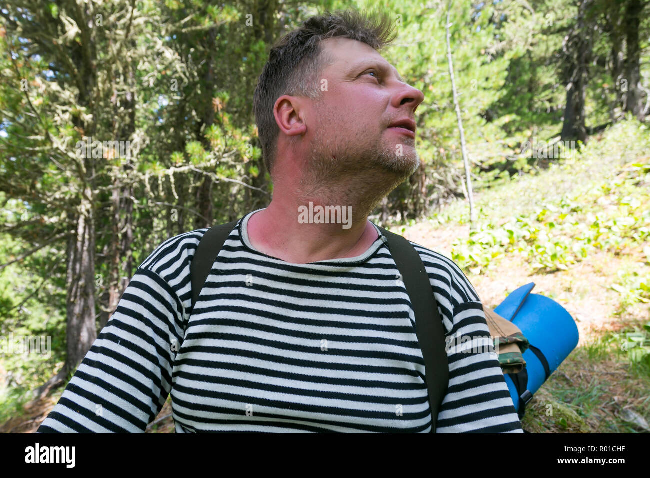 Tumor and redness on the neck of a man from the bite of mosquitoes and midges in the forest. - Stock Image
