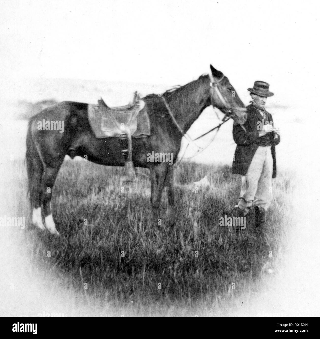 Cyrus Thomas (1825 – 1910) American ethnologist and entomologist prominent in the late 19th century and noted for his studies of the natural history of the American West. - Stock Image