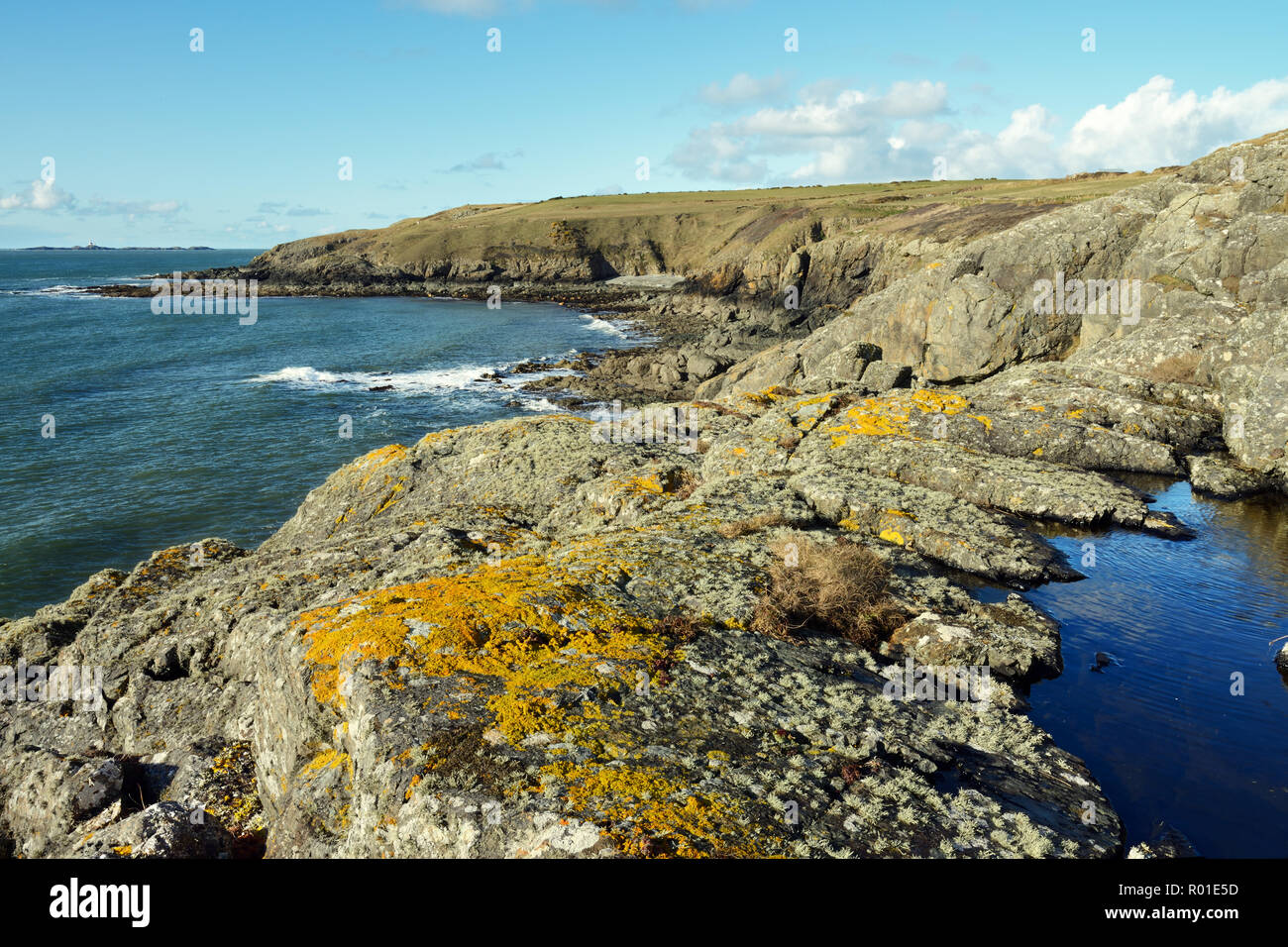 Carmel Head is a coastal headland on the north western side of Anglesey in North Wales. It is designated a SSSI for its geological interest. - Stock Image