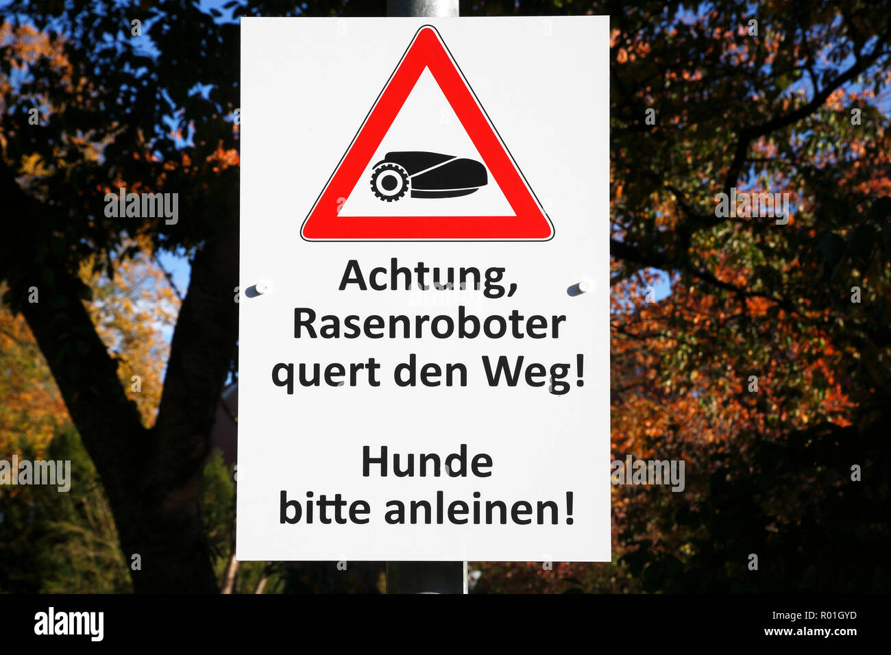 Warning sign for lawn mower robot, danger for free-running dogs, Schleswig-Holstein, Germany - Stock Image