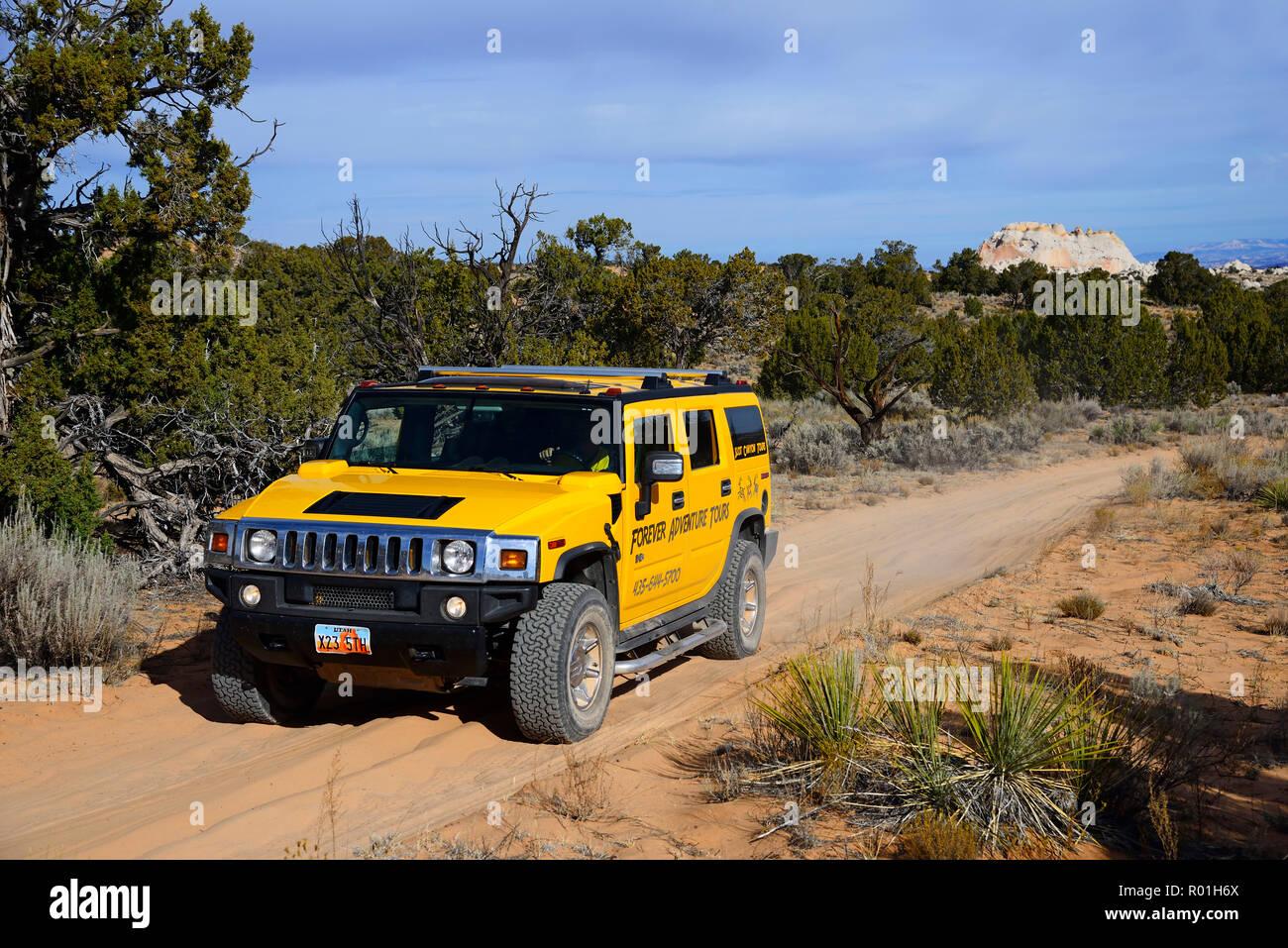 Yellow Hummer driving on a sand track to White Pocket Canyon, Kanab, Utah, USA - Stock Image