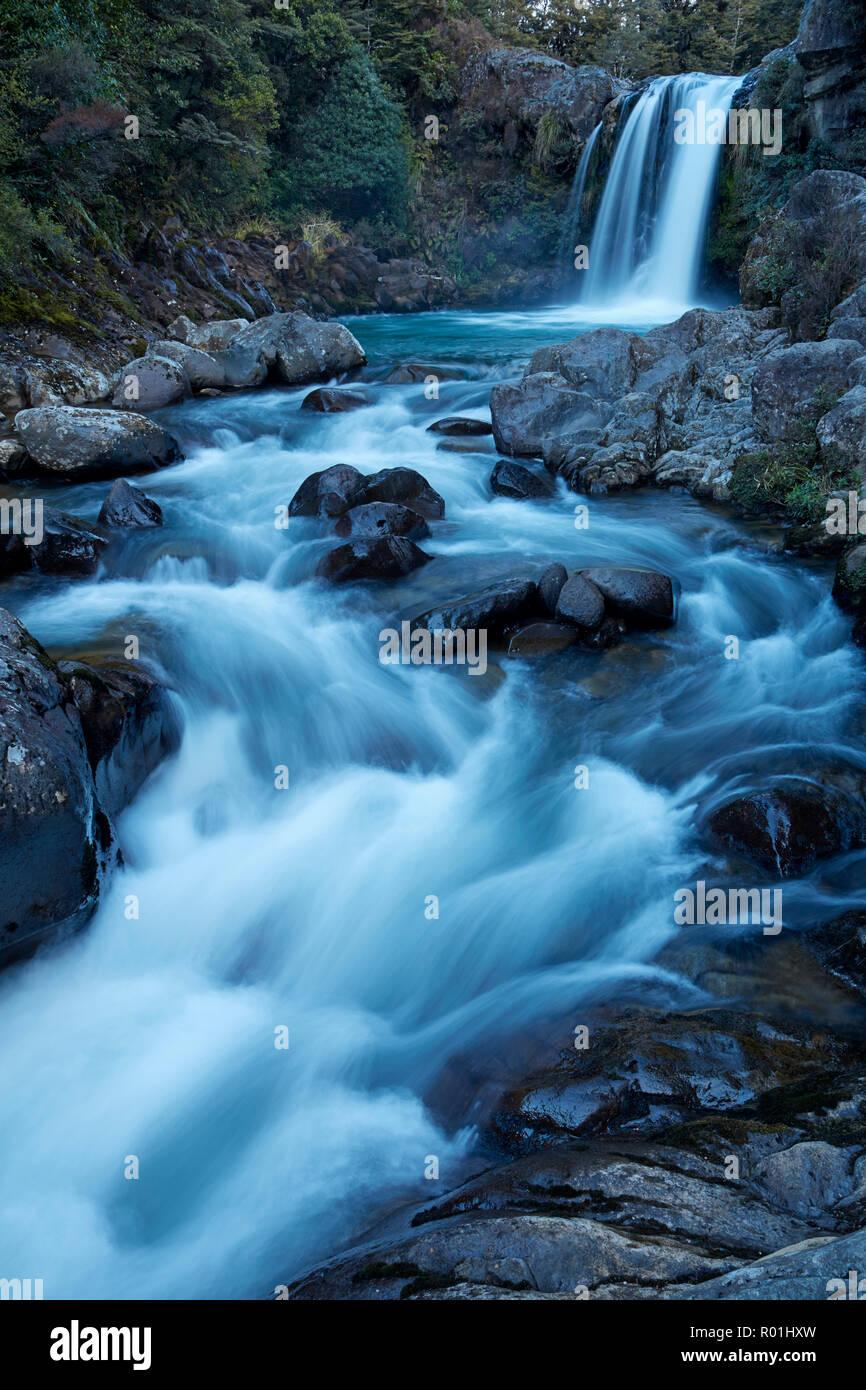 Tawhai Falls, Whakapapanui Stream, Tongariro National Park, Central Plateau, North Island, New Zealand - Stock Image