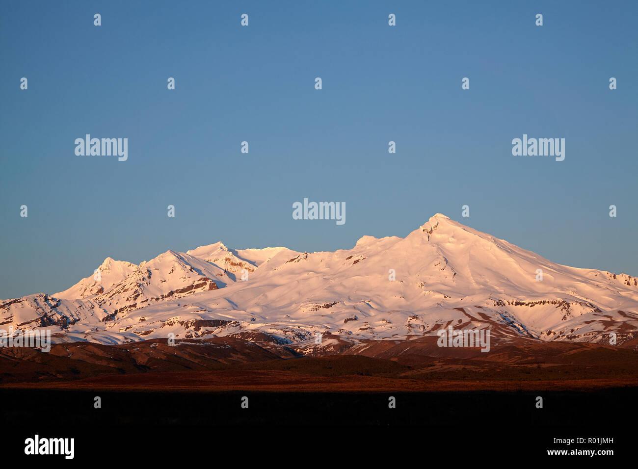 Early light on Mt Ruapehu, Tongariro National Park, Central Plateau, North Island, New Zealand - Stock Image