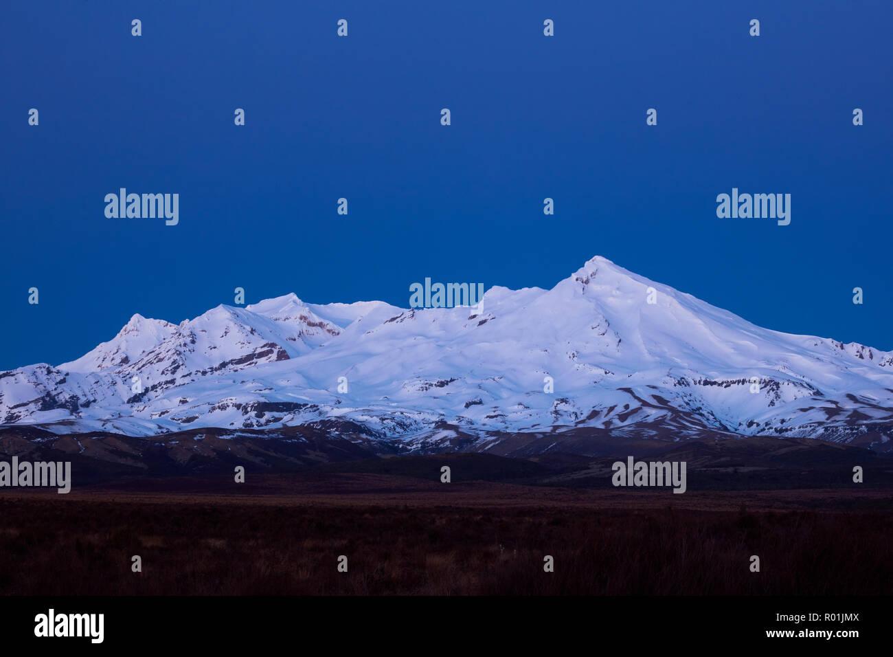 Mt Ruapehu at dawn, Tongariro National Park, Central Plateau, North Island, New Zealand - Stock Image
