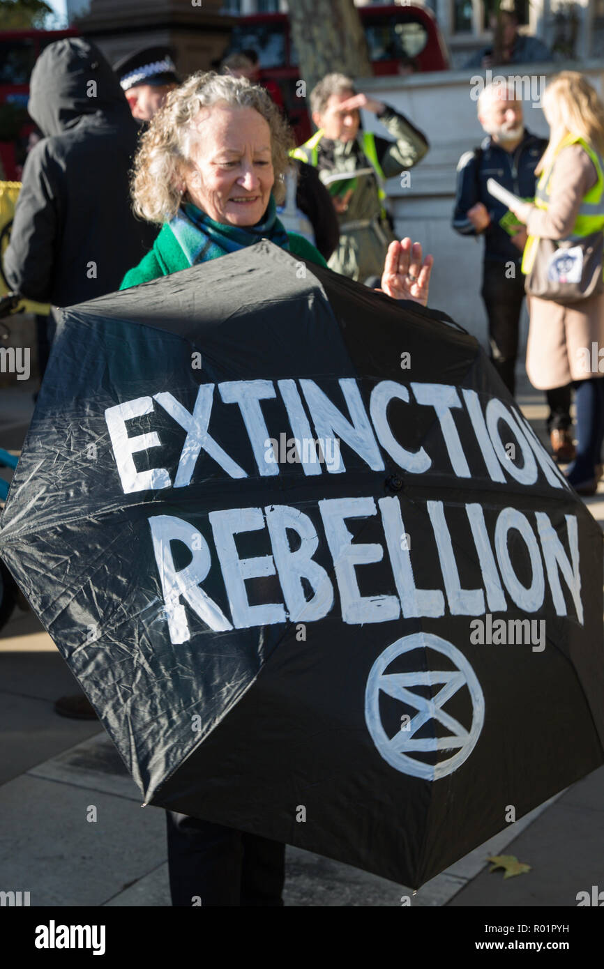 London, UK. 31st October, 2018. Green Party peer Baroness Jenny Jones holds an Extinction Rebellion umbrella as environmental campaigners gather in Parliament Square to make a formal declaration of non-violent rebellion against the British government for 'criminal inaction in the face of climate change catastrophe and ecological collapse'. Credit: Mark Kerrison/Alamy Live News - Stock Image