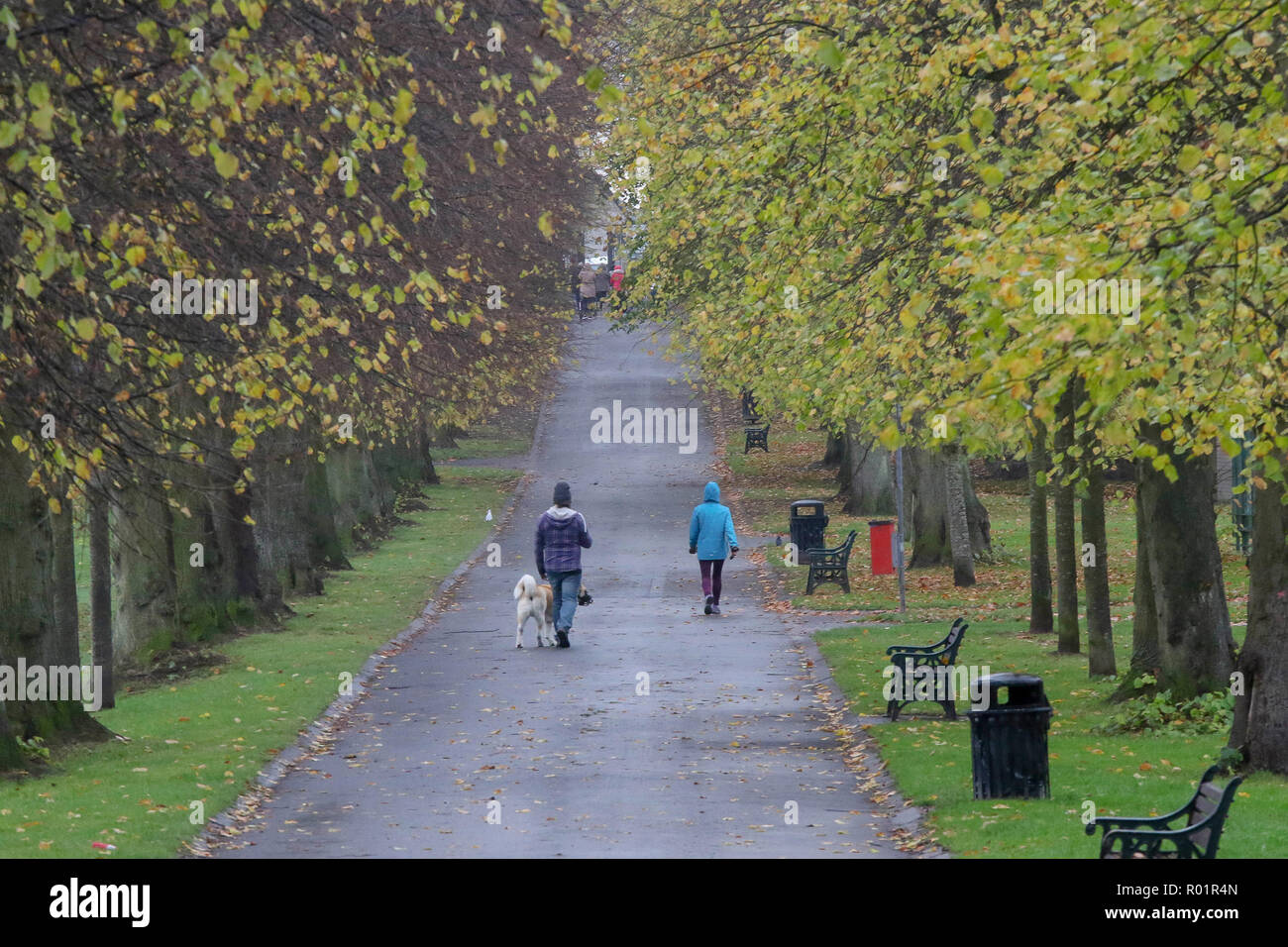 Lurgan Park, Lurgan, County Armagh, Northern Ireland. 31 October 2018. UK weather - a damp cold day in Lurgan Park with grey sky overhead until late afternoon. Credit: David Hunter/Alamy Live News. Stock Photo