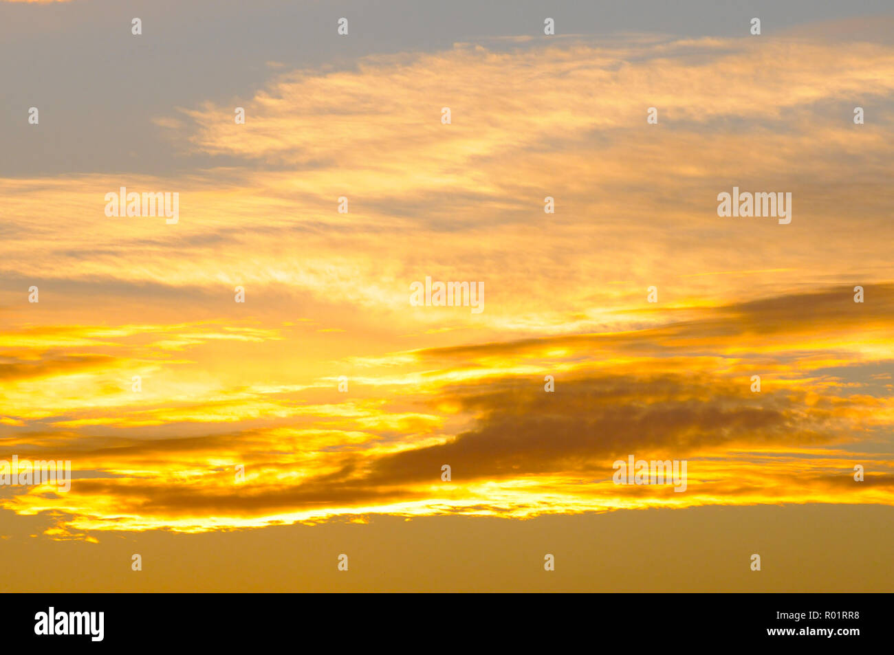 London, UK, 31 October 2018 Sunset in Richmond Park on the last day of October. Credit: JOHNNY ARMSTEAD/Alamy Live News - Stock Image