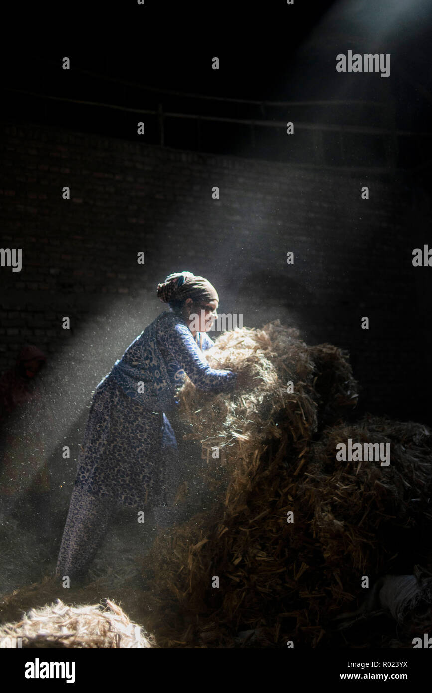 Sun rays enter through the rooftop while Jute mill worker sorting out small pieces of jutes. Bangladesh used to be known for it's Jute. In recent years Bangladesh and many other country considering jute as the new possibilities to replace many daily goods and make bags out of jute to replace plastics. - Stock Image