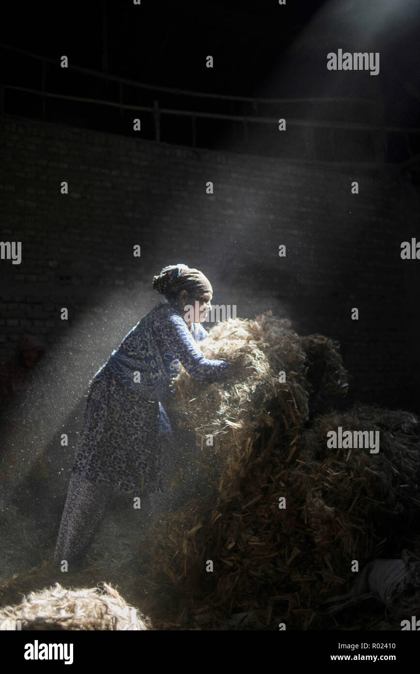 Narayanganj, Bangladesh. 1st Nov, 2018. Sun rays enter through the rooftop while Jute mill worker sorting out small pieces of jutes.Bangladesh used to be known for it's Jute. In recent years Bangladesh and many other country considering jute as the new possibilities to replace many daily goods and make bags out of jute to replace plastics. Credit: Ziaul Haque Oisharjh/SOPA Images/ZUMA Wire/Alamy Live News - Stock Image