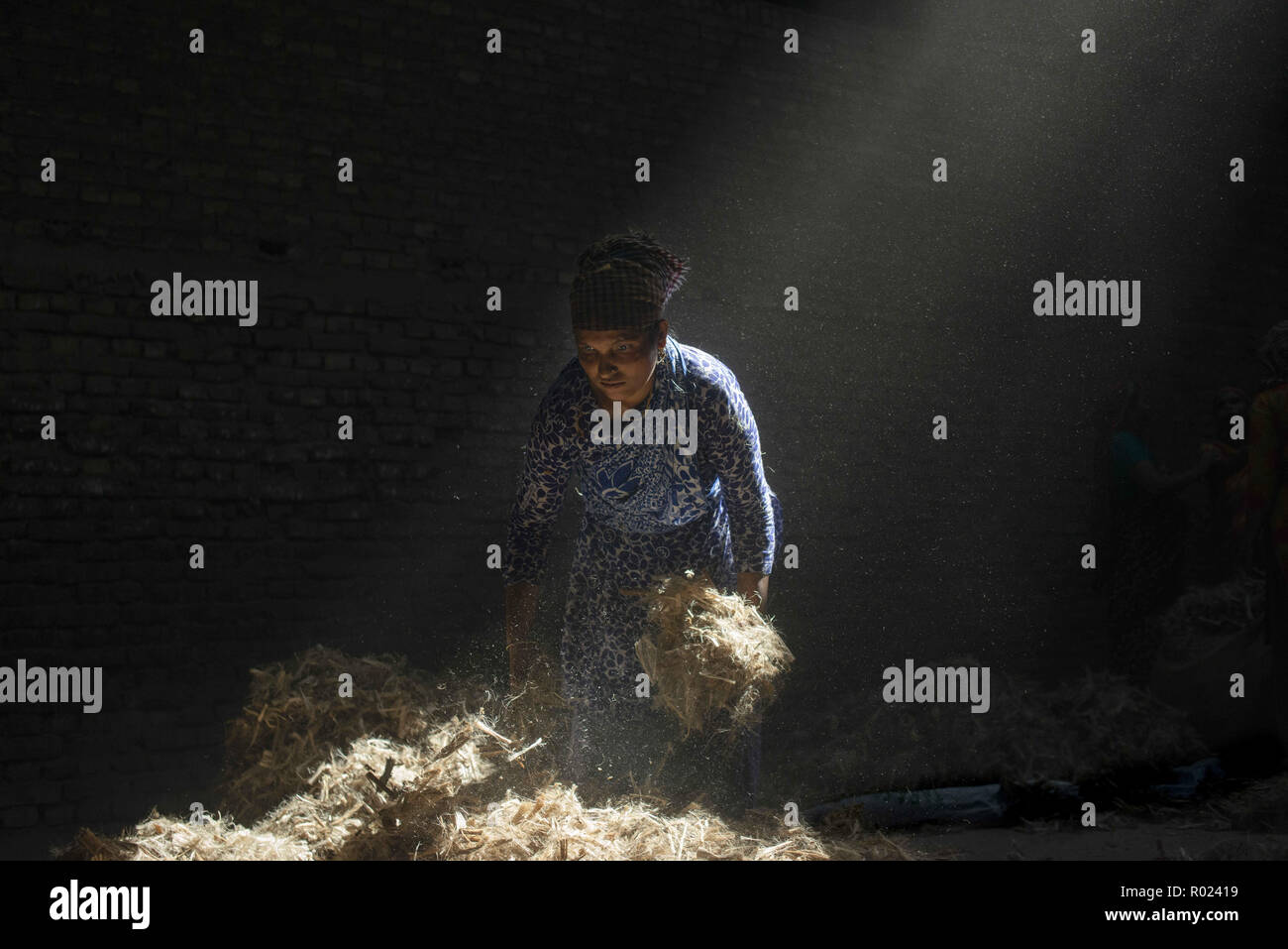 Narayanganj, Bangladesh. 1st Nov, 2018. Sun rays enter through the rooftop while Jute mill worker sorting out small pieces of jutes.Bangladesh used to be known for it's Jute. In recent years Bangladesh and many other country considering jute as the new possibilities to replace many daily goods and make bags out of jute to replace plastics. Credit: Ziaul Haque Oisharjh/SOPA Images/ZUMA Wire/Alamy Live News Stock Photo