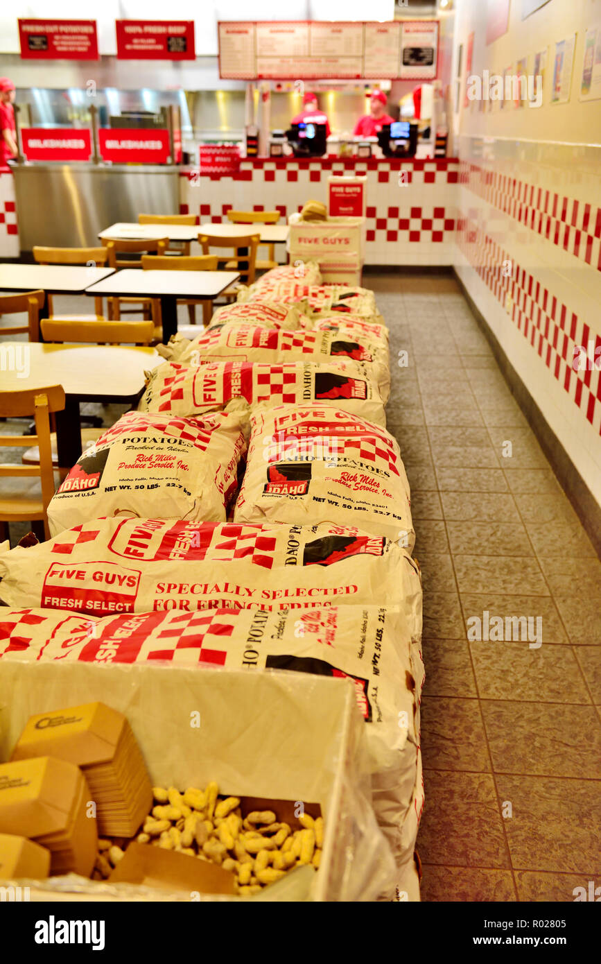 Inside Five Guys fast-food chain serving burgers, fresh fries branch in Ithaca NY, USA with sacks of potatoes. - Stock Image