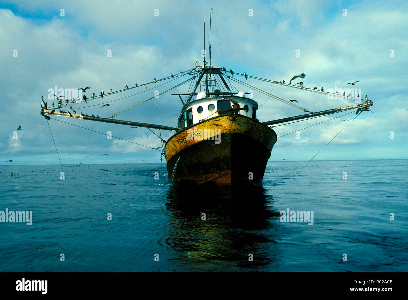 Shrimp Drag Net Stock Photos & Shrimp Drag Net Stock Images - Alamy