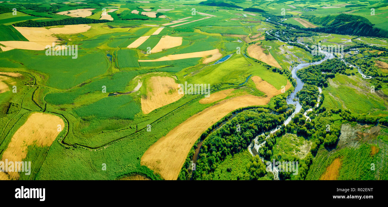 Green fields aerial view before harvest at summer - Stock Image
