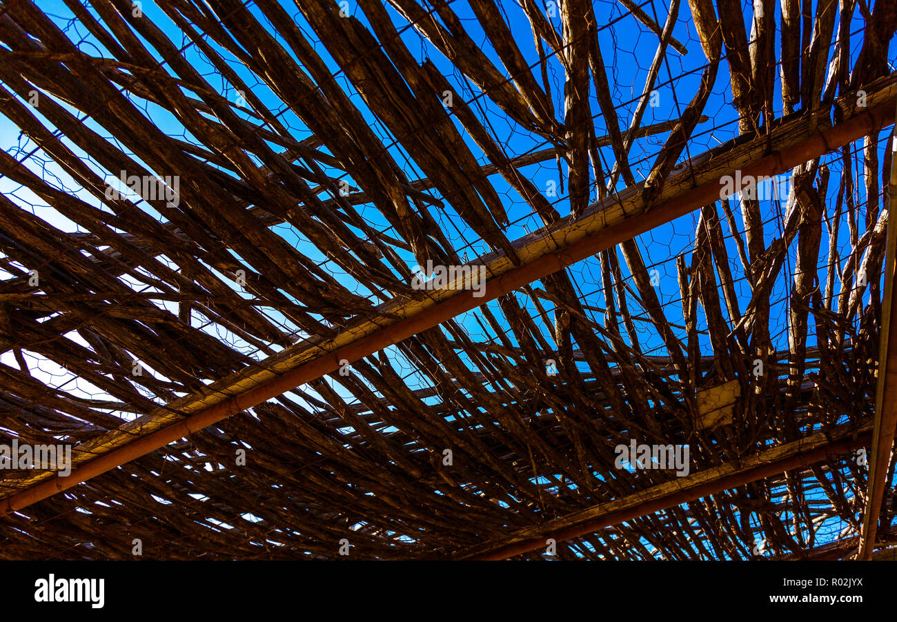 Blue sky through a thatch roof. - Stock Image