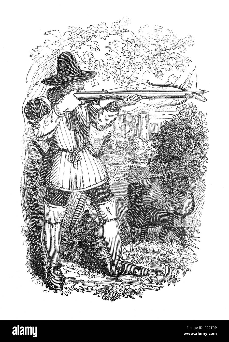 A medieval English crossbow-man out hunting. The use of the crossbow grew by leaps and bounds between the 13th and mid-15th centuries. The reasons for this steady rise in popularity were that the device was inexpensive to make and easy to master and began to appear as a lethal hand-held weapon. The reputation ofthe crossbowman was mixed as they were seen as valued members of an army often commanding twice the wages of ordinary foot soldiers. - Stock Image