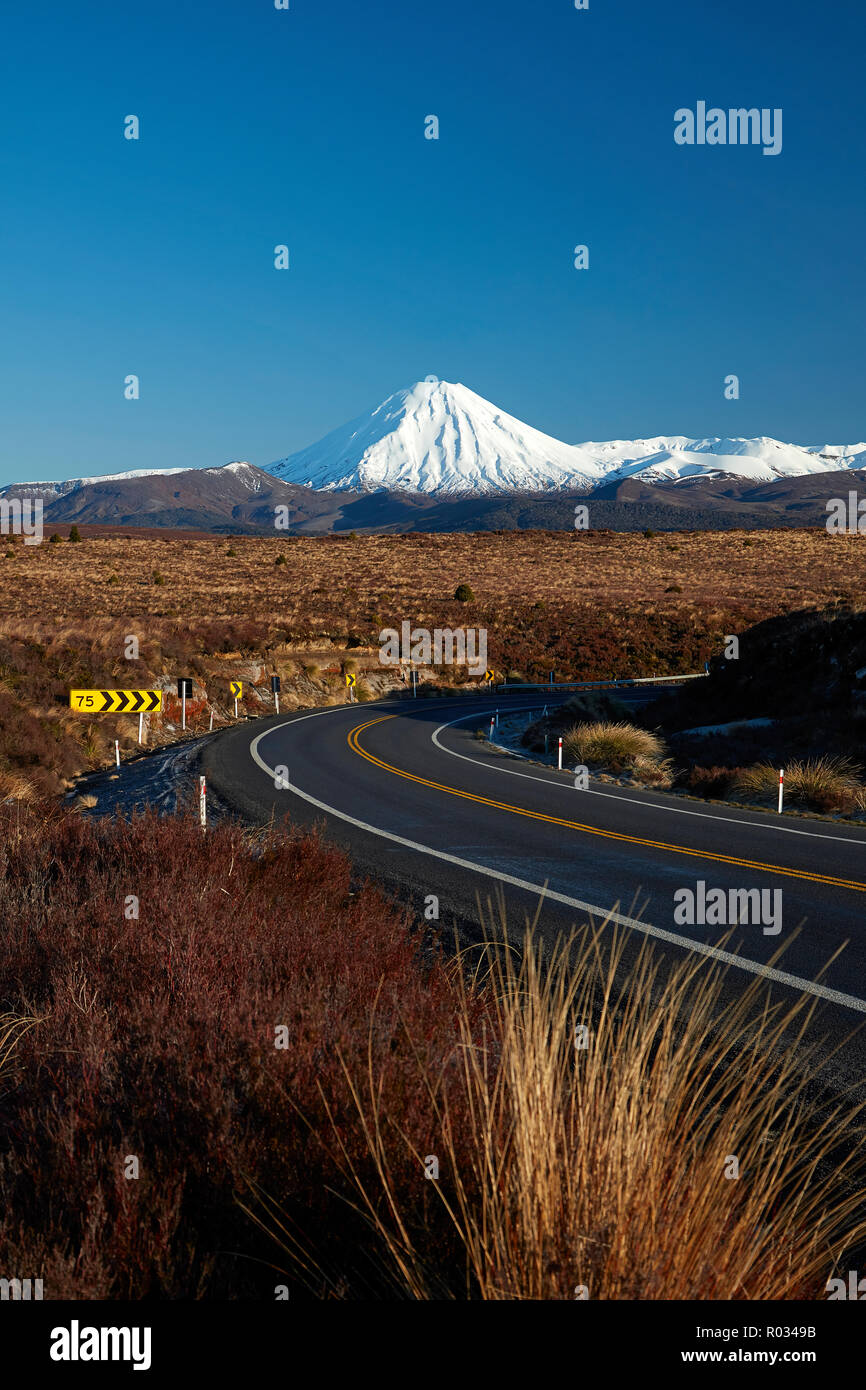 Mt Ngauruhoe and Desert Road, Tongariro National Park, Central Plateau, North Island, New Zealand - Stock Image