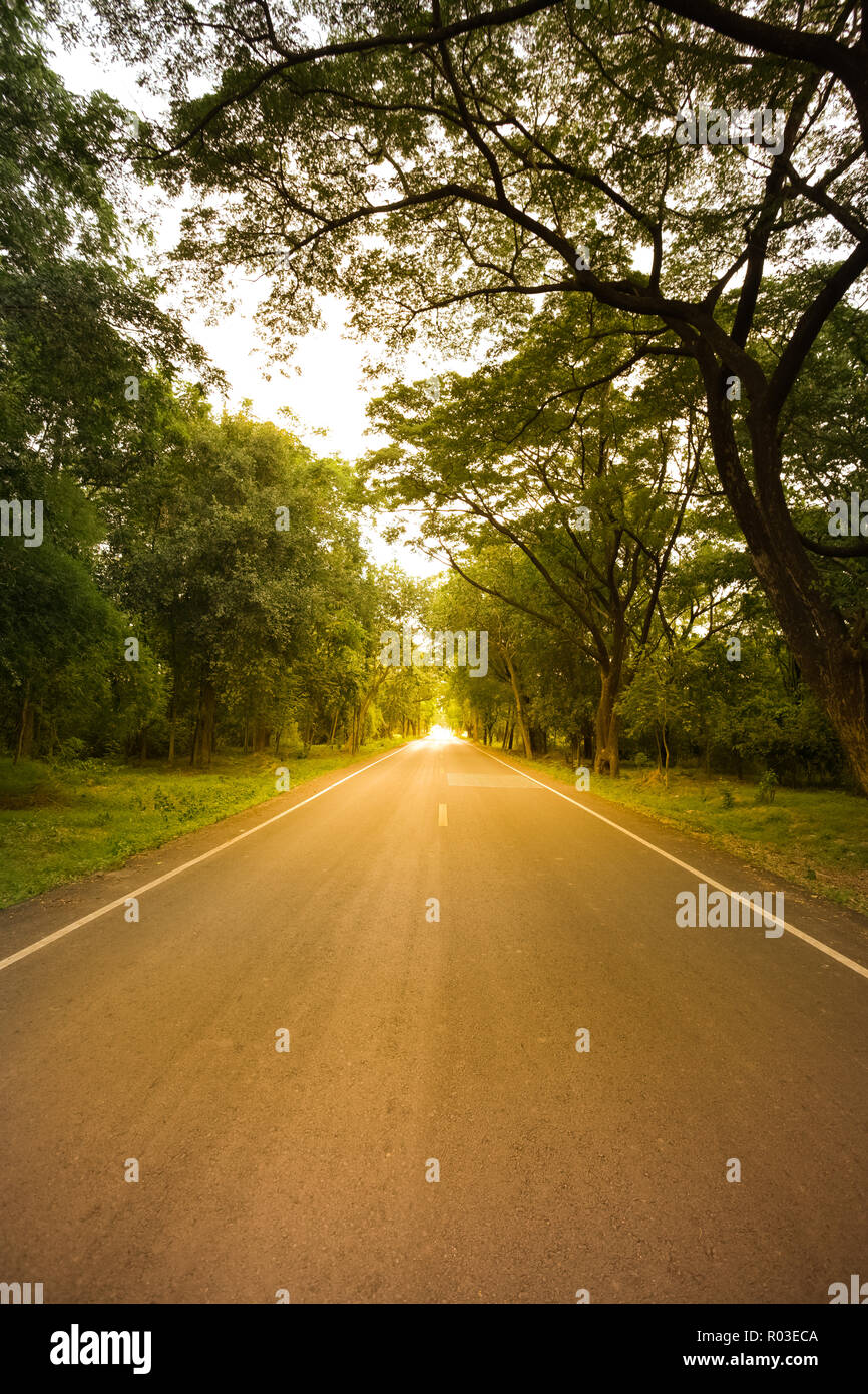New asphalt highway to nature in the scenery at sunset warm tone. - Stock Image