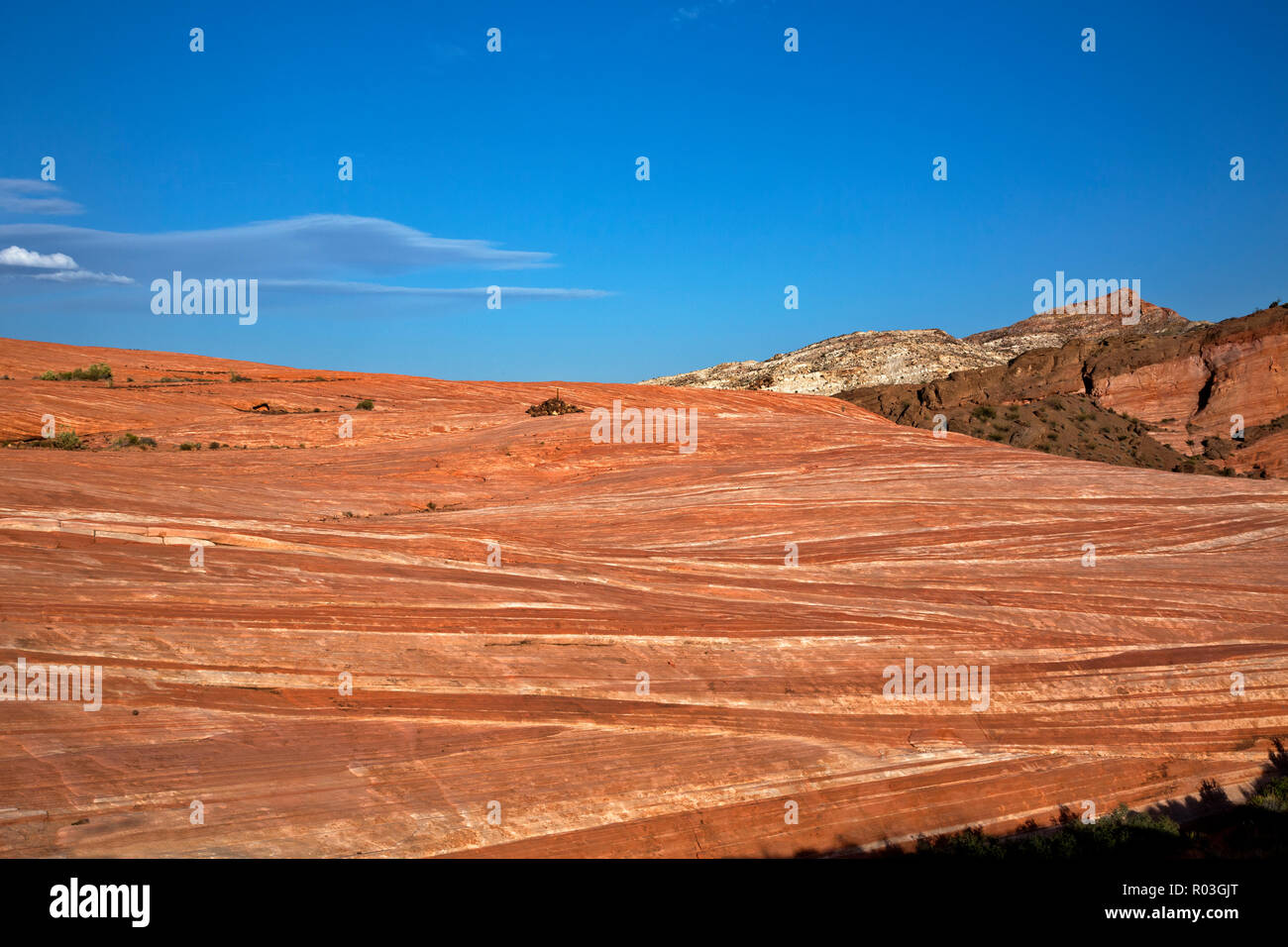 NV00069-00...NEVADA - Contrasting layers of sandstone along the cairn marked trail near The Fire Wave  in the Valley of Fire State Park. - Stock Image