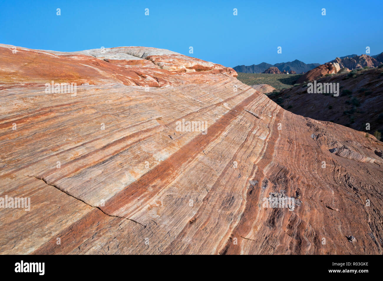 NV00071-00...NEVADA - Contrasting layers of sandstone near The Fire Wave  in the Valley of Fire State Park. - Stock Image