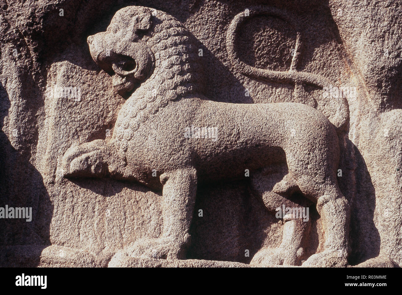 Mythological carved animal, Arjuna's Penance, Mamallapuram