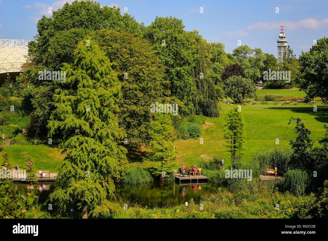 Essen, Germany, Ruhr Area, Grugapark - Stock Image