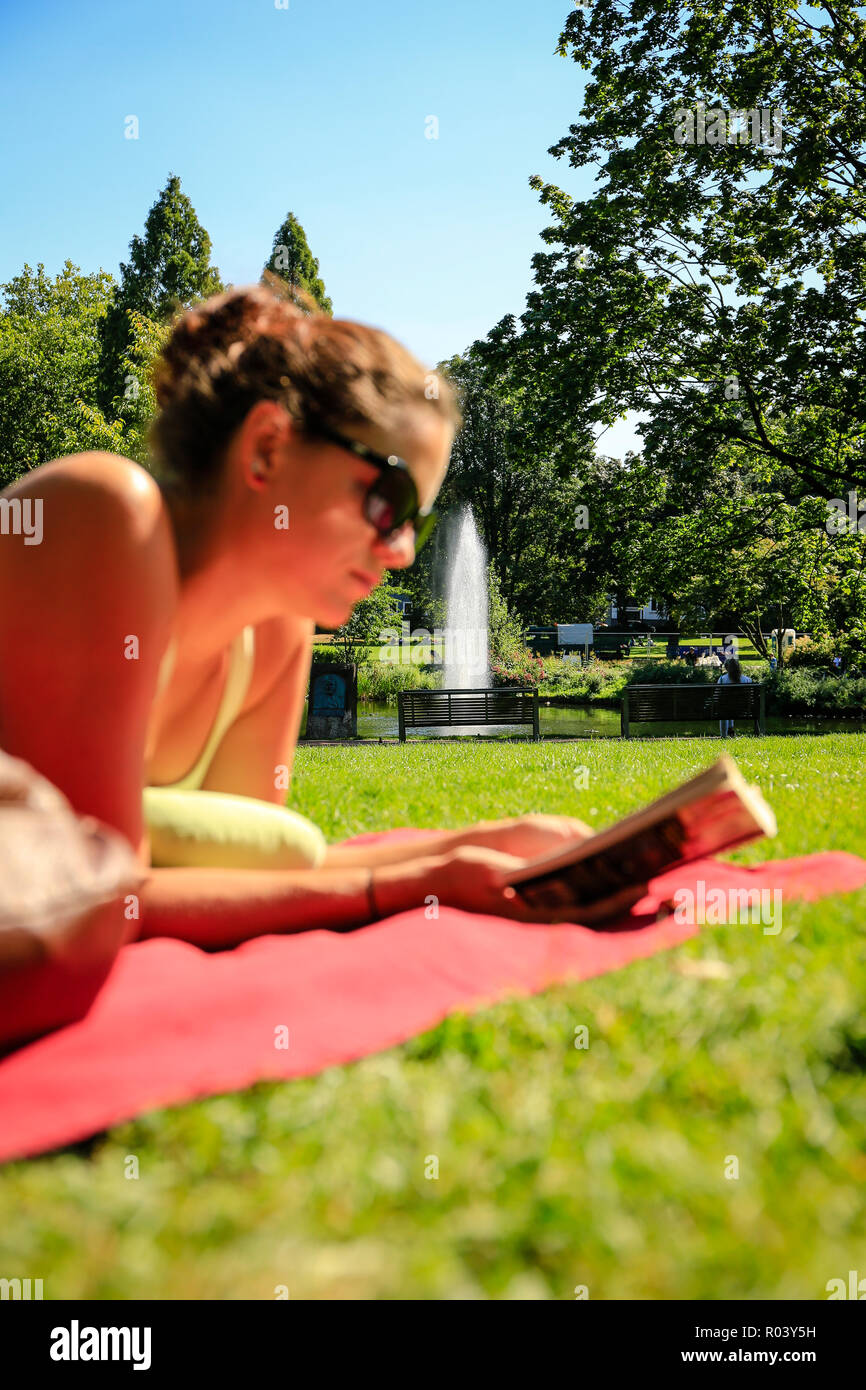 Essen, Germany, Ruhr area, city garden, young woman lies on the meadow and reads in a book - Stock Image