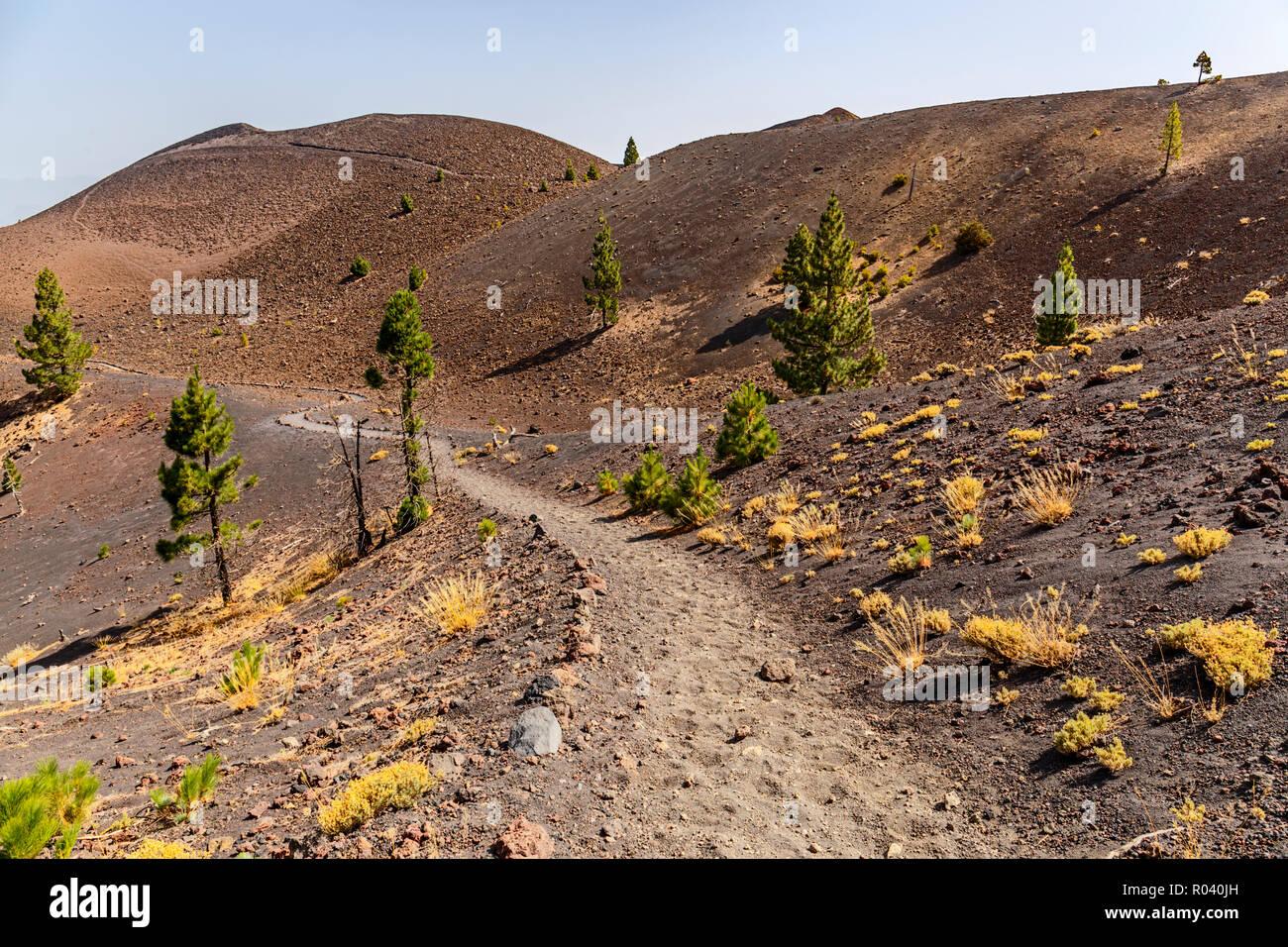 Path along Ruta de los Volcanes, beautiful hiking path over the volcanoes, La Palma, Canary Islands - Stock Image