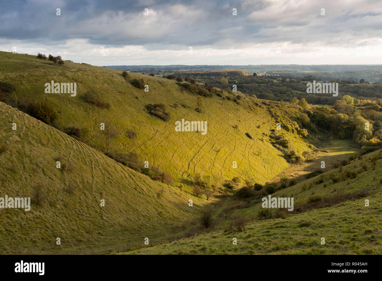 Late afternoon light during October on the Devil's Kneading Trough, a glacial valley in the Kent Downs AONB near Wye, UK. - Stock Image