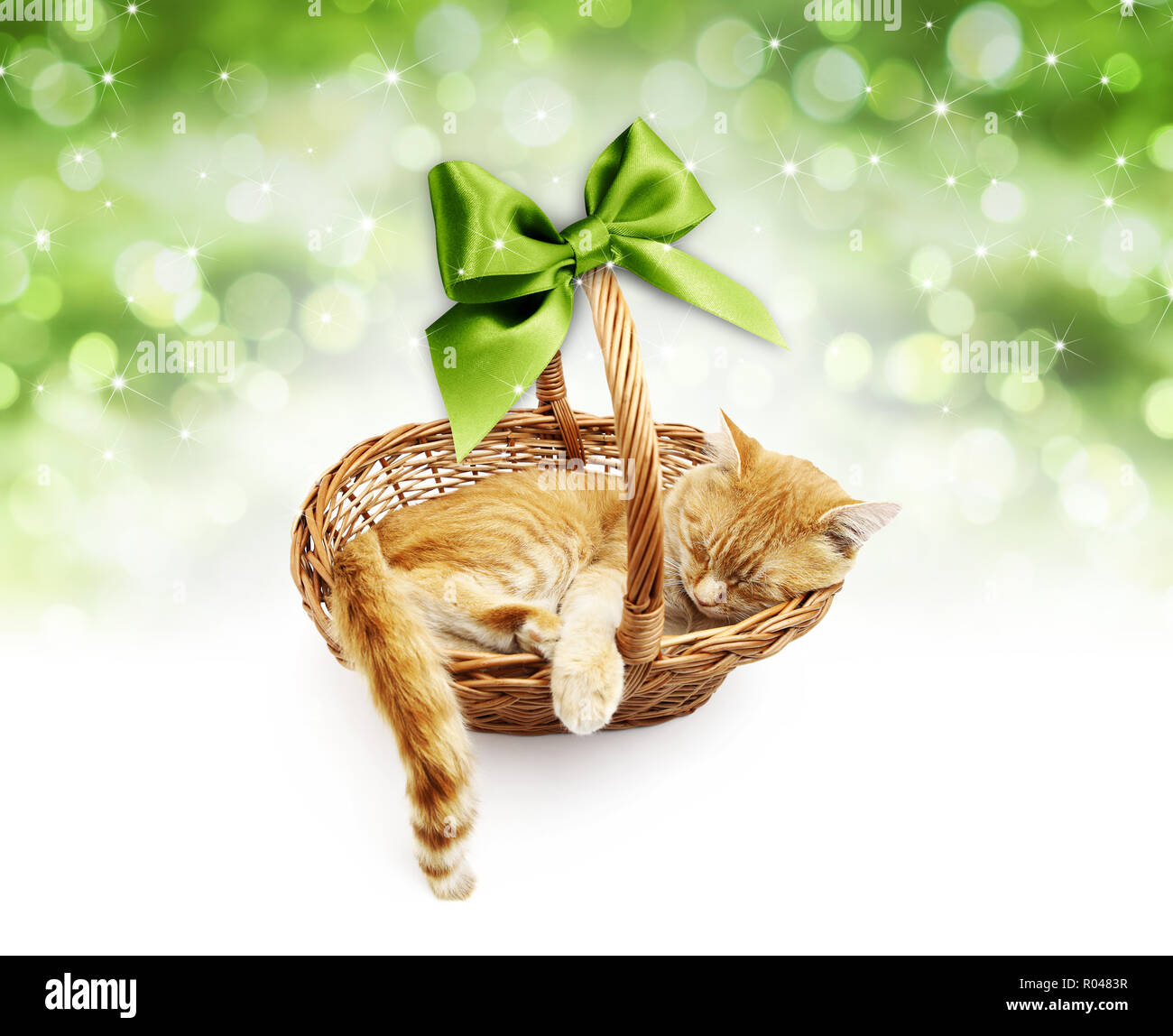 greeting or gift card, ginger cat inside wicker basket with green ribbon bow, isolated on Christmas bright lights background - Stock Image