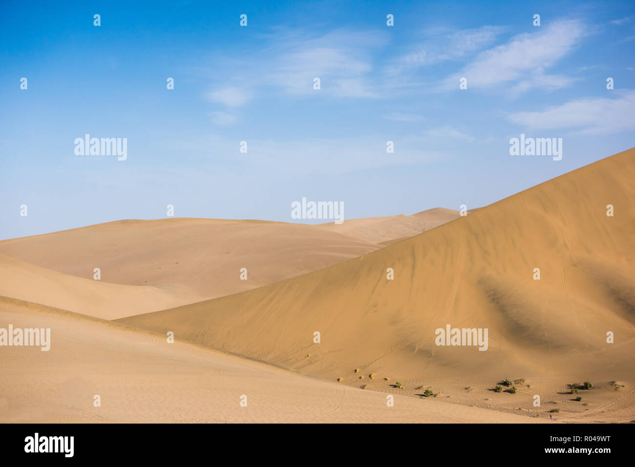 Desert sand dunes with blue sky background. Beautiful curves of deserts - Stock Image