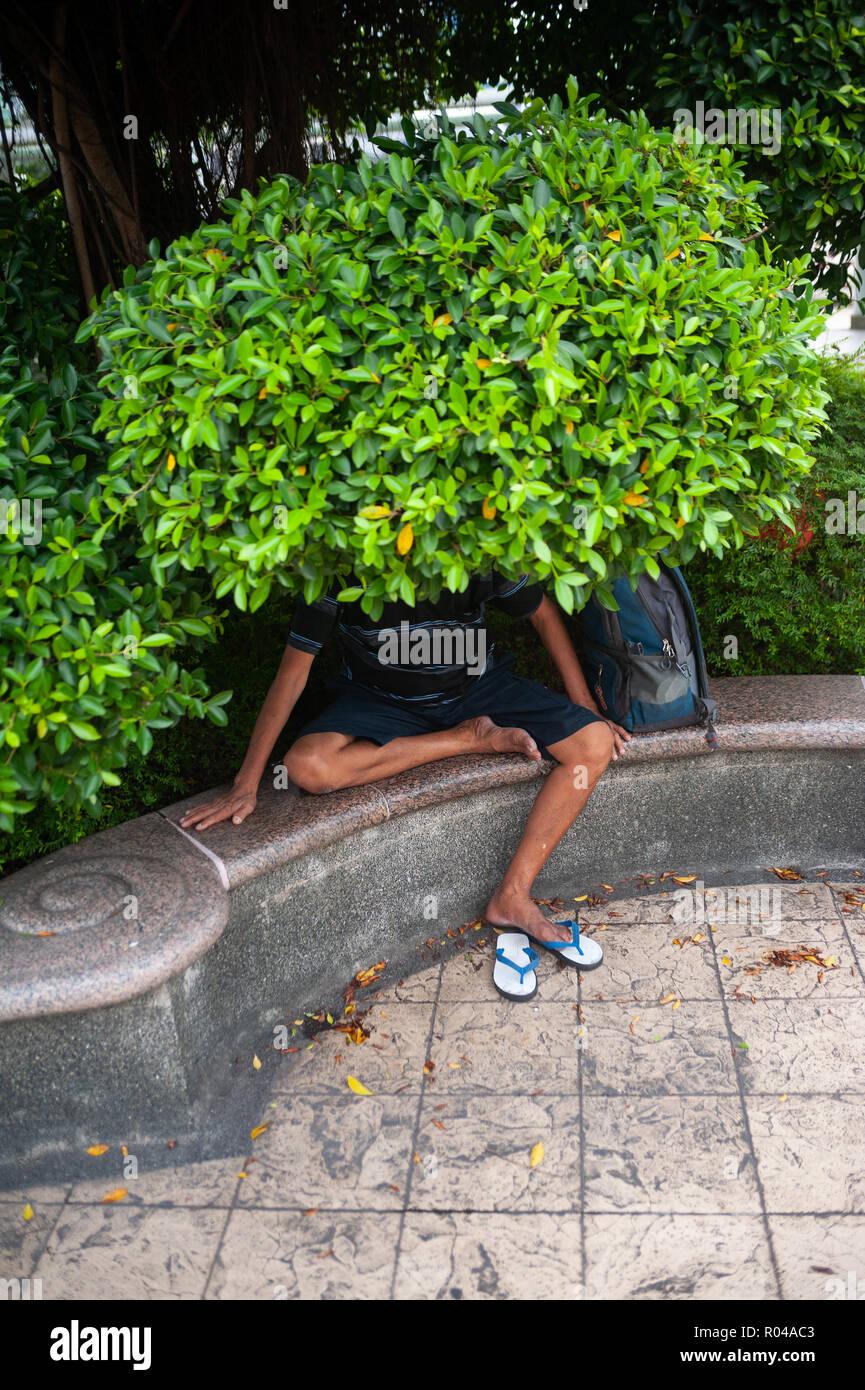 Republic of Singapore, man under a tree - Stock Image