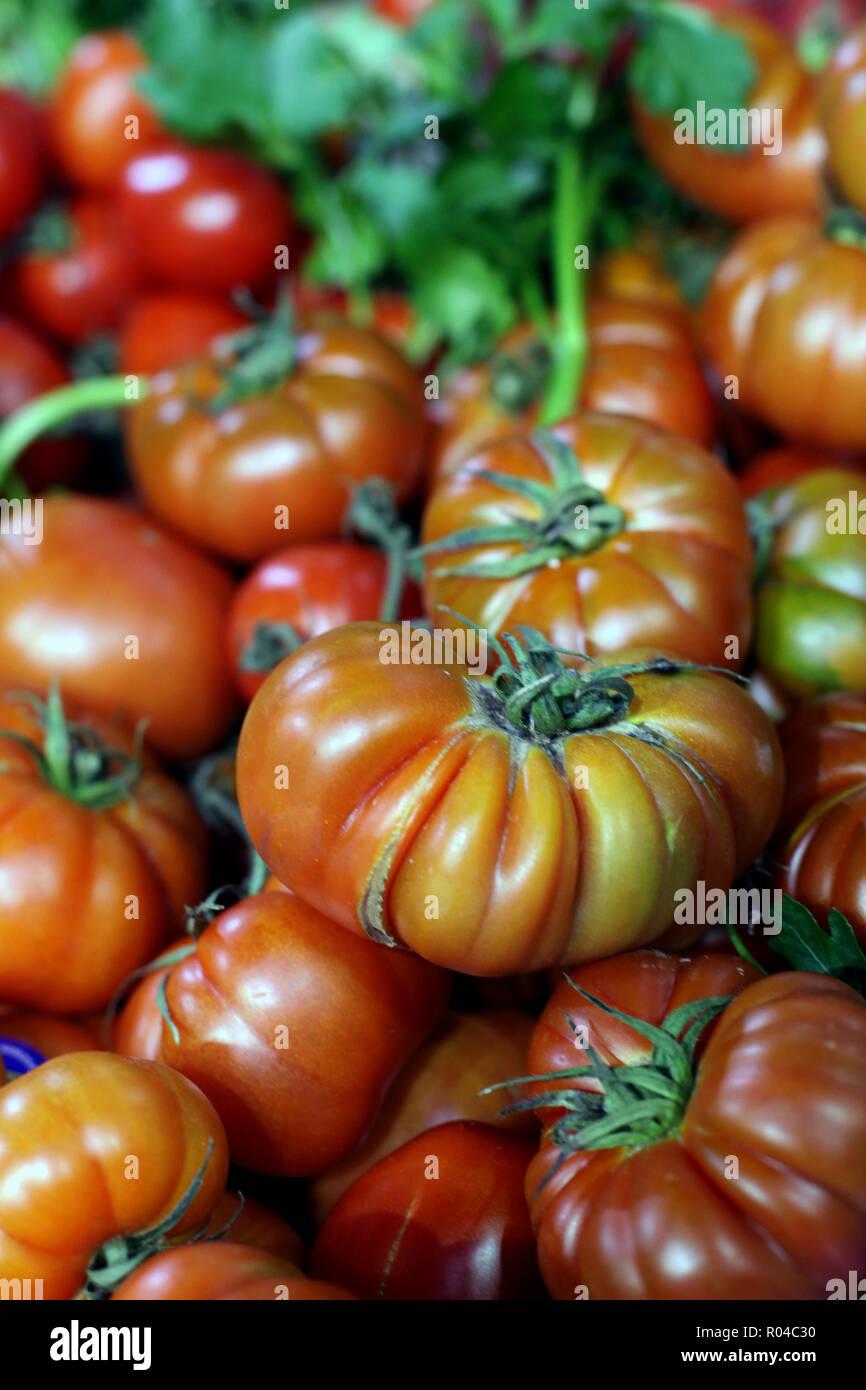 Close up of large vibrant orange beefsteak tomatoes - Stock Image