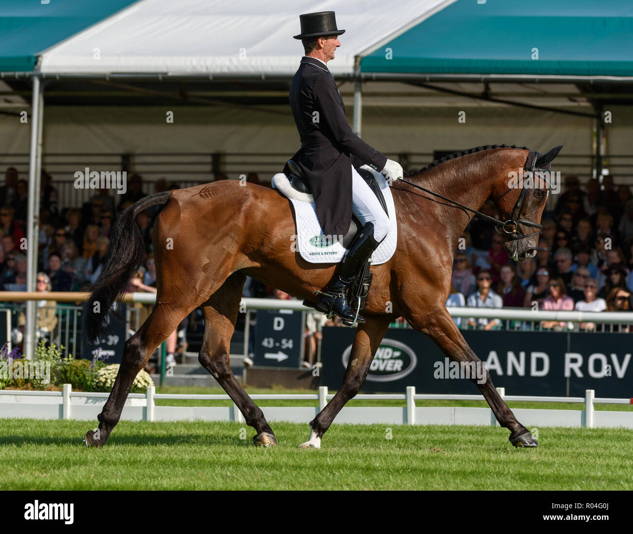 Mark Todd and NZB CAMPINO during the dressage phase of the Land Rover Burghley Horse Trials, 2018 Stock Photo