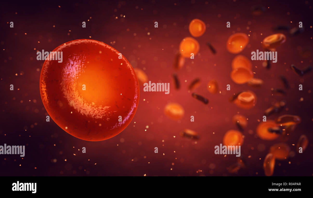 Red blood cells carry oxygen to all body tissues, Erythrocytes background, 3d illustration - Stock Image