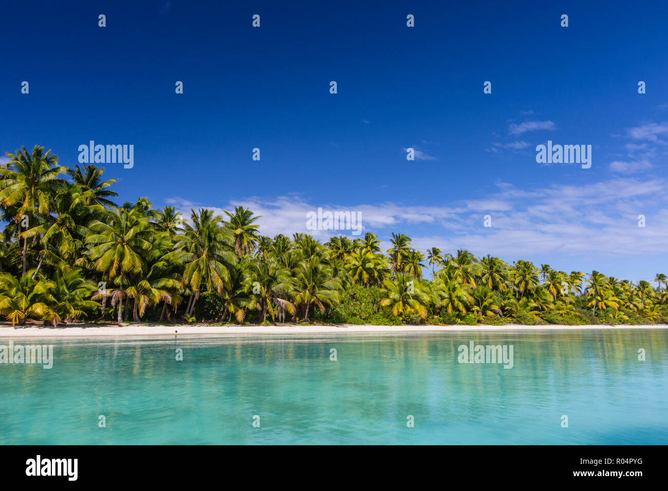 Coconut palm trees line the beach on One Foot Island, Aitutaki, Cook Islands, South Pacific Islands, Pacific - Stock Image