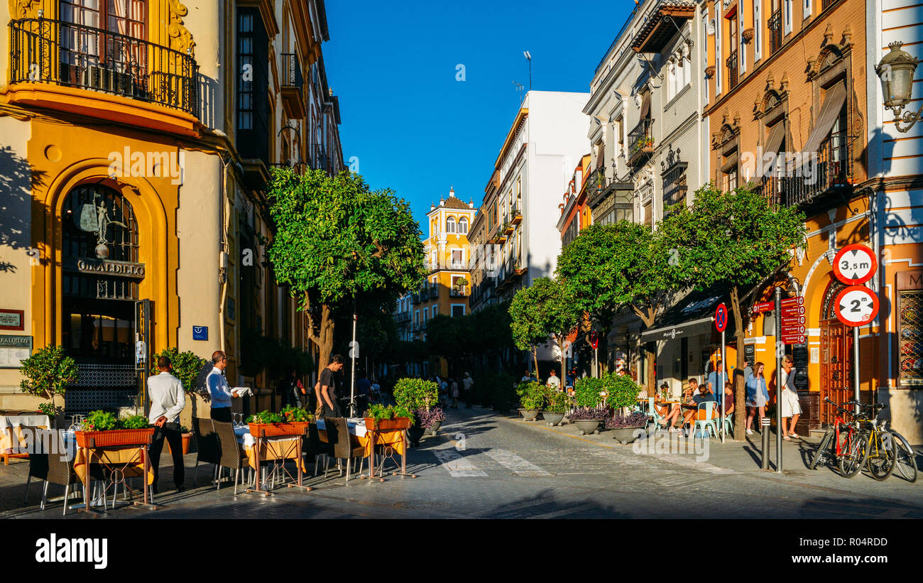 Calle Mateos Gago, a busy street with bars and restaurants in the historic centre of Seville, Andalusia, Spain, Europe - Stock Image