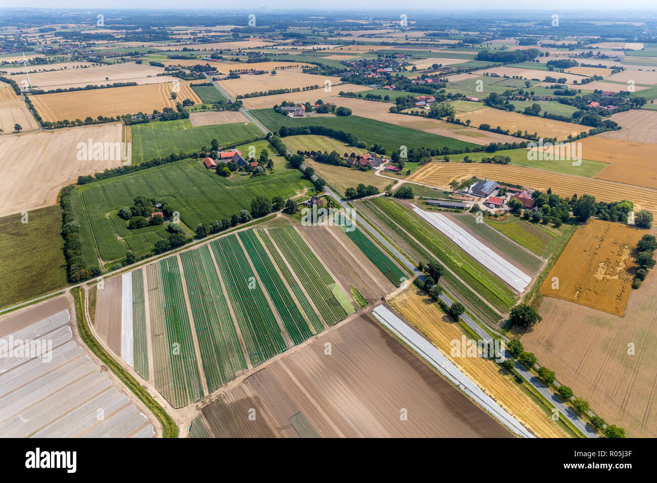 Aerial view, organic farm Angenendt, Mersch, Drensteinfurt, Münsterland, North Rhine-Westphalia, Germany, Europe, DEU, birds-eyes view, aerial view, a - Stock Image