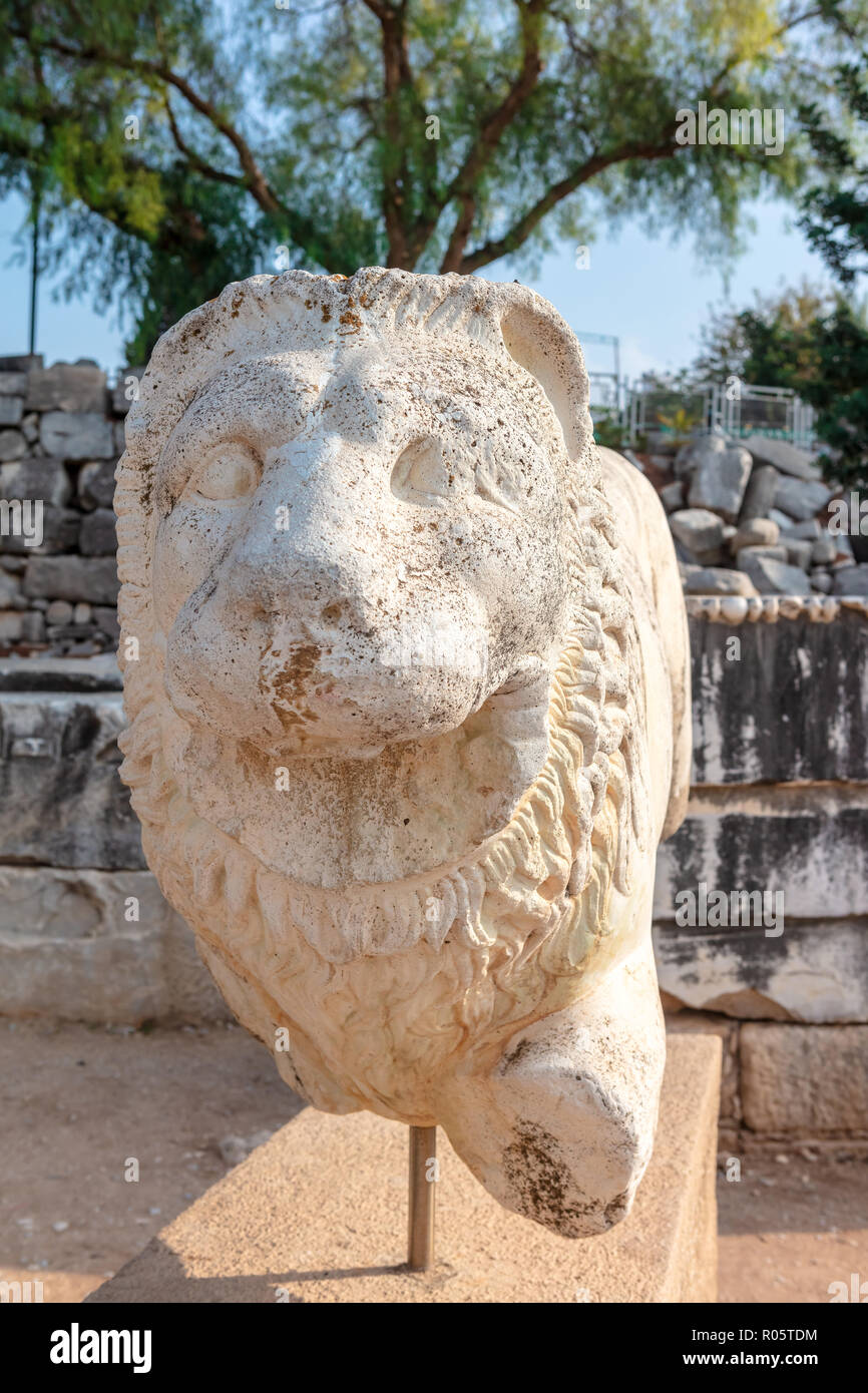 Sculpture of lion at the archaeological site of Ruins of the Apollo Temple in Didyma, Turkey. - Stock Image