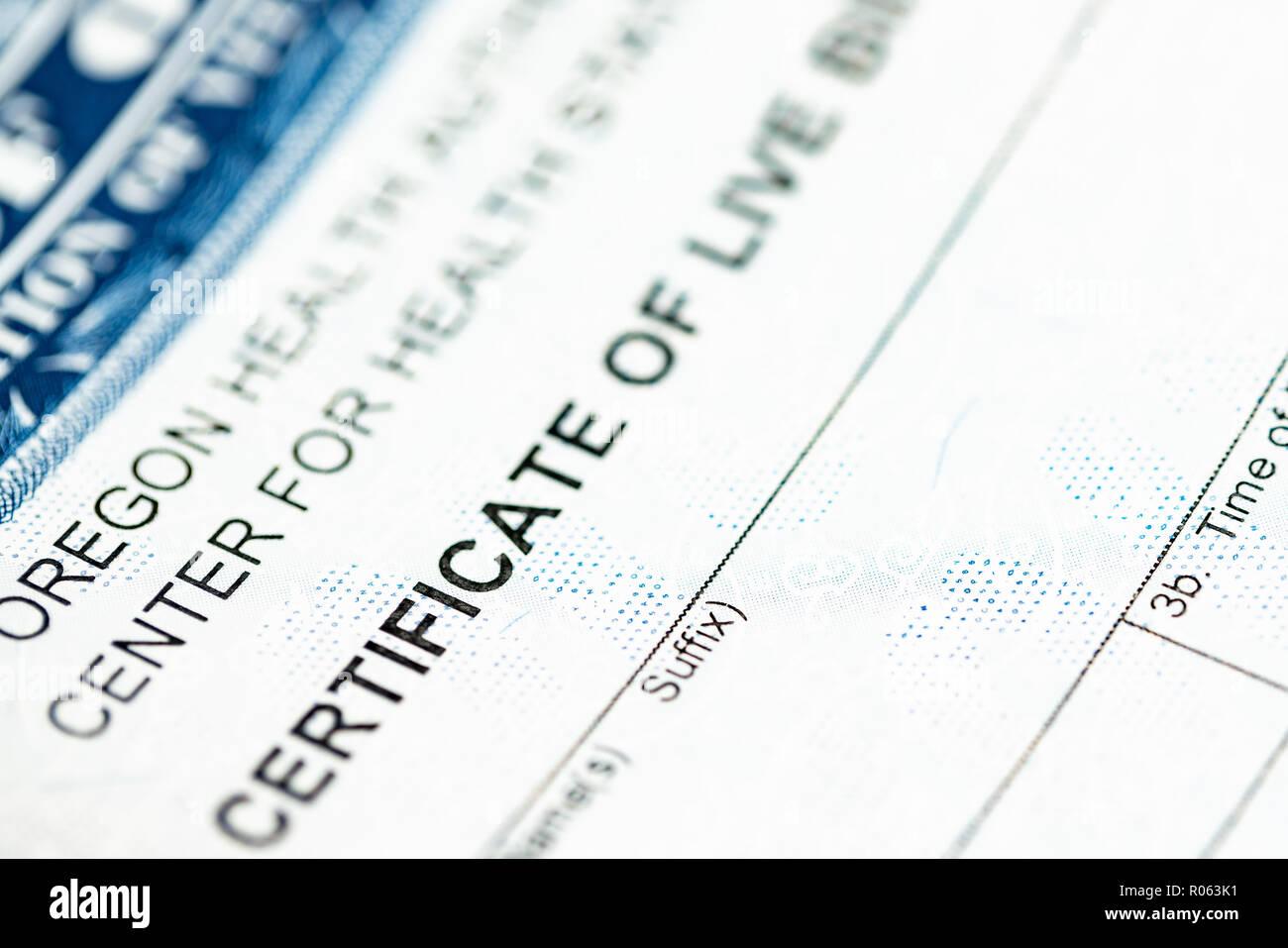 Certificate Of Live Birth Up Close Macro Shot Stock Photo 223869381