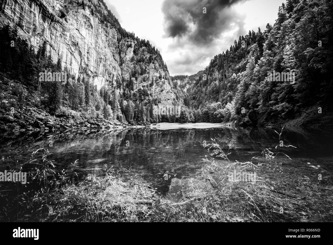 Dramatic mountain landscape, black and white image. Abstract process, pine forest and lake water reflection. Nature background Stock Photo