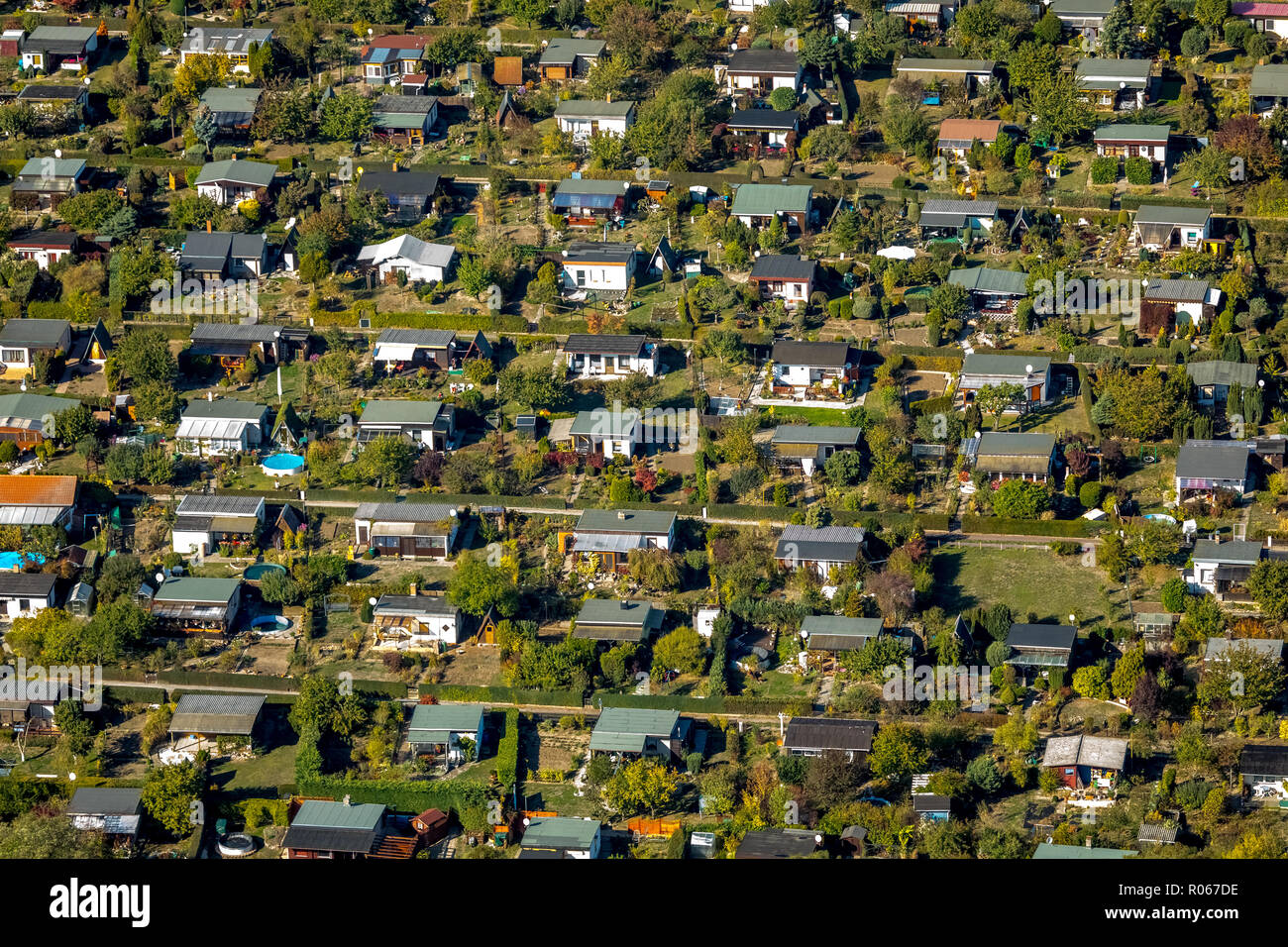 Aerial view, allotment garden, allotment garden, Salbke, Magdeburg, Saxony-Anhalt, Germany, DEU, Europe, aerial view, birds-eyes view, aerial photogra - Stock Image
