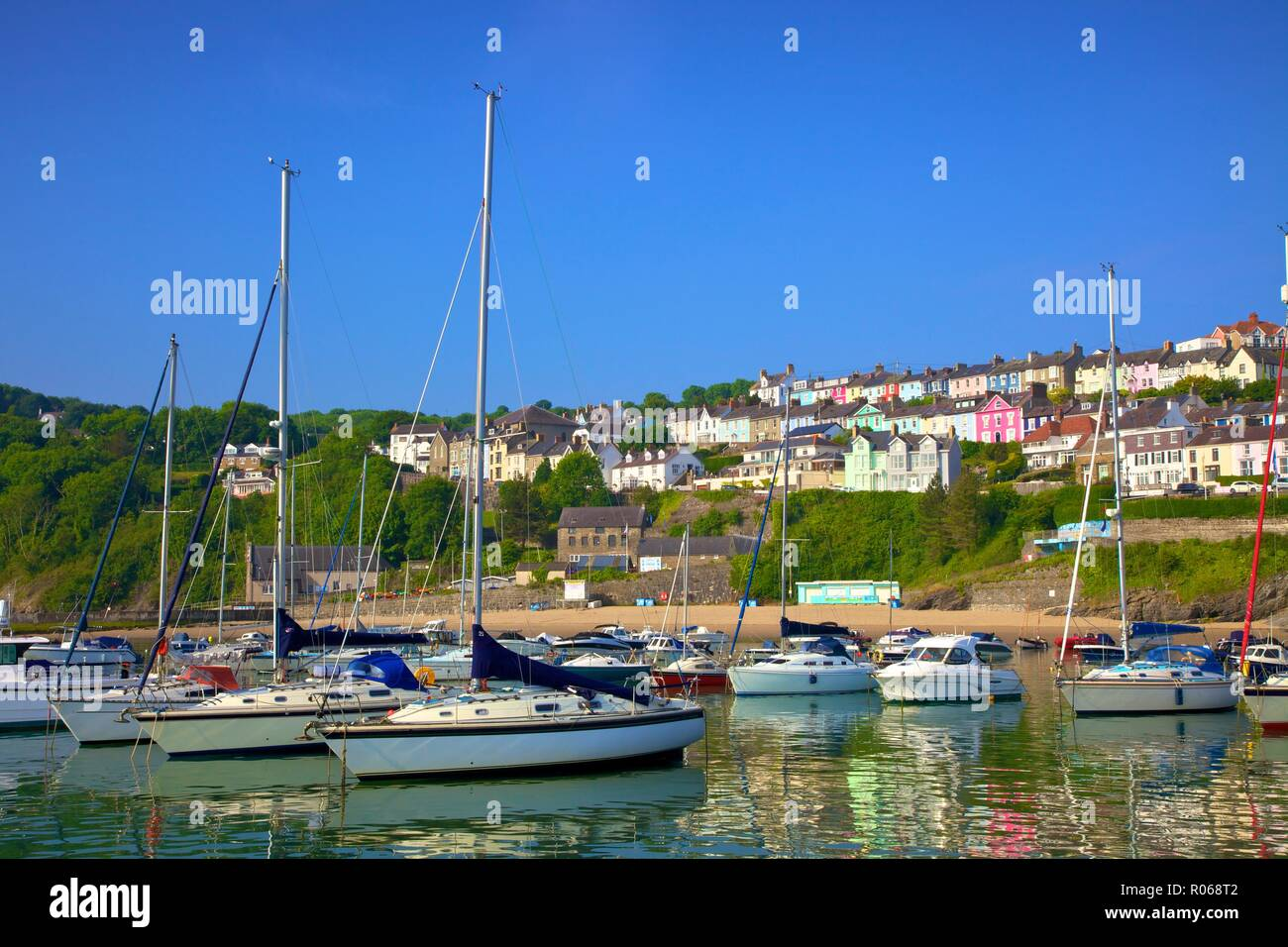The Harbour at New Quay, Cardigan Bay, Wales, United Kingdom, Europe - Stock Image