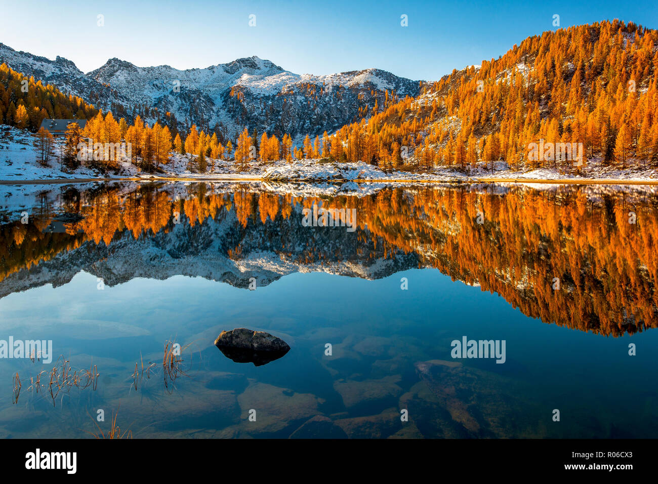 Autumn mirror at San Giuliano lake, Dolomiti di Brenta Natural Park, Dolomites, Trentino-Alto Adige, Italy, Europe - Stock Image