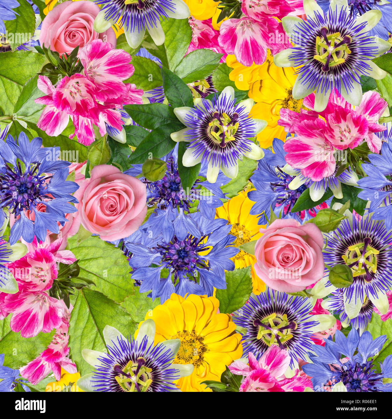 Seamless Pattern With Different Spring Flowers Background With