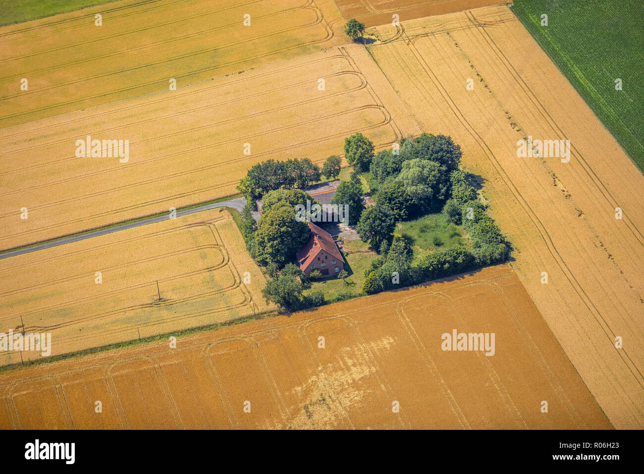 Aerial view, Farmhouse, Schirl, Ostbevern, Münsterland, North Rhine-Westphalia, Germany, Europe, DEU, birds-eyes view, aerial view, aerial photography - Stock Image