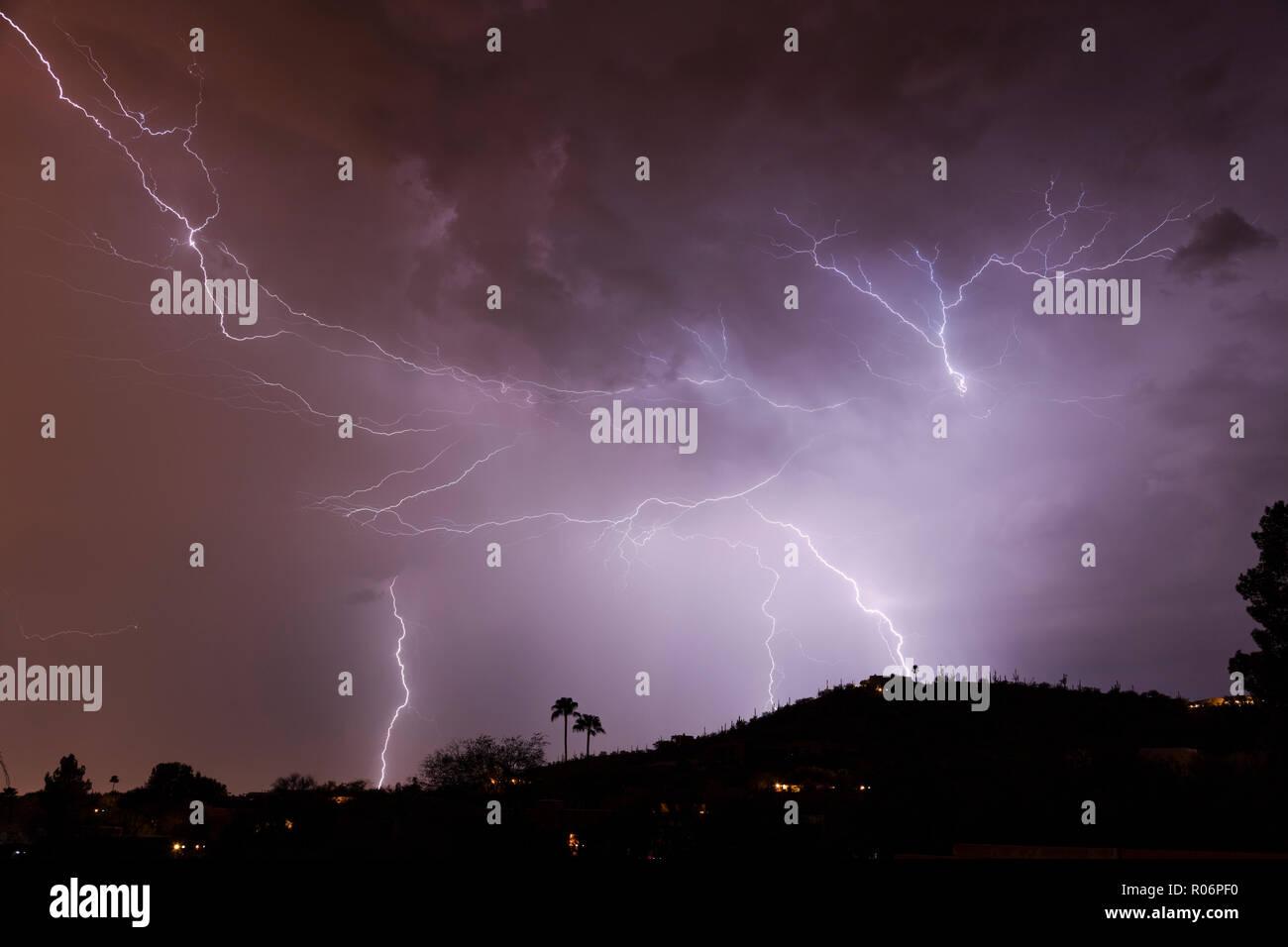 Spider Lightning, The Monsoons, Tucson, AZ - Stock Image