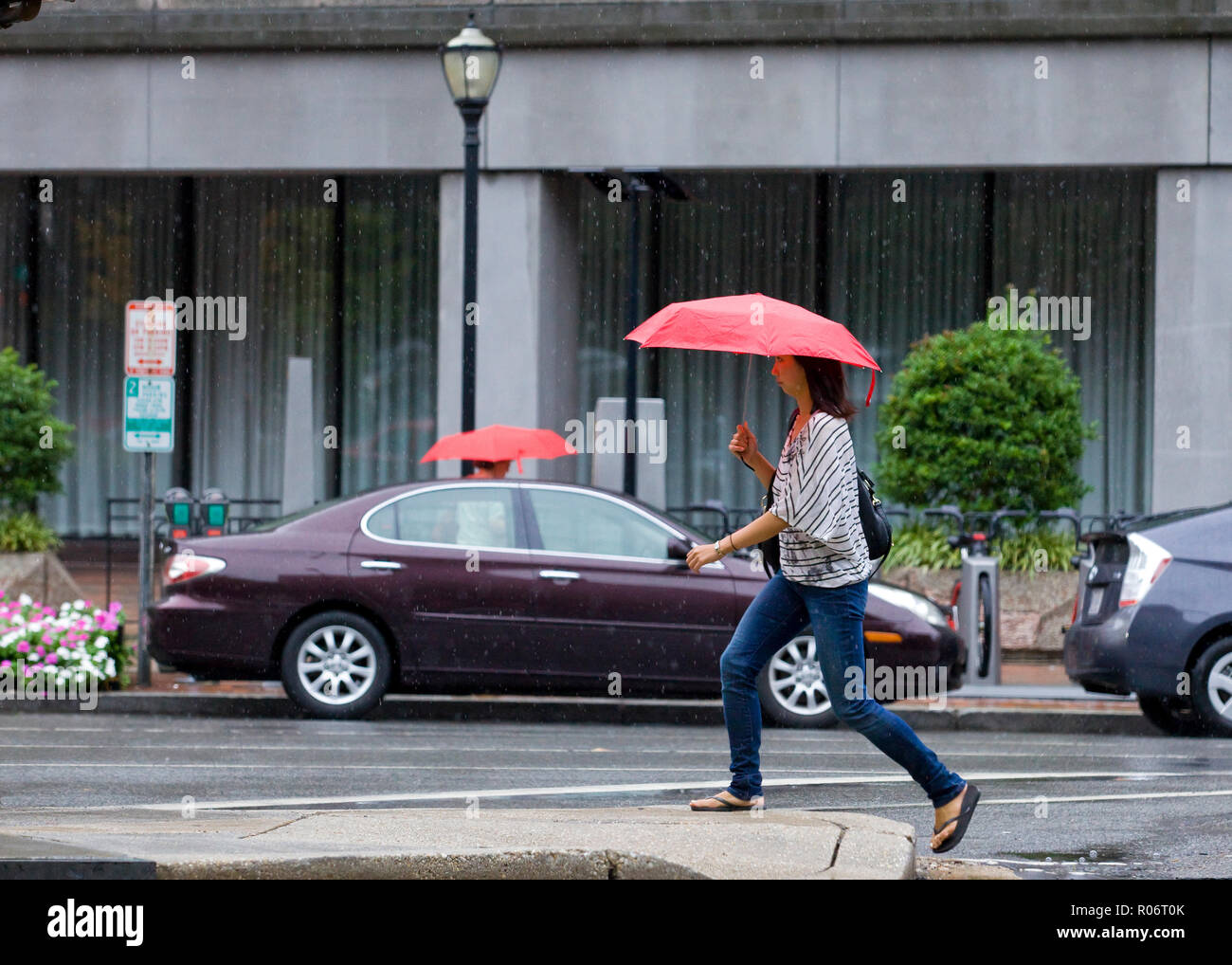 A woman walking alone on a rainy day holding an umbrella - USA - Stock Image