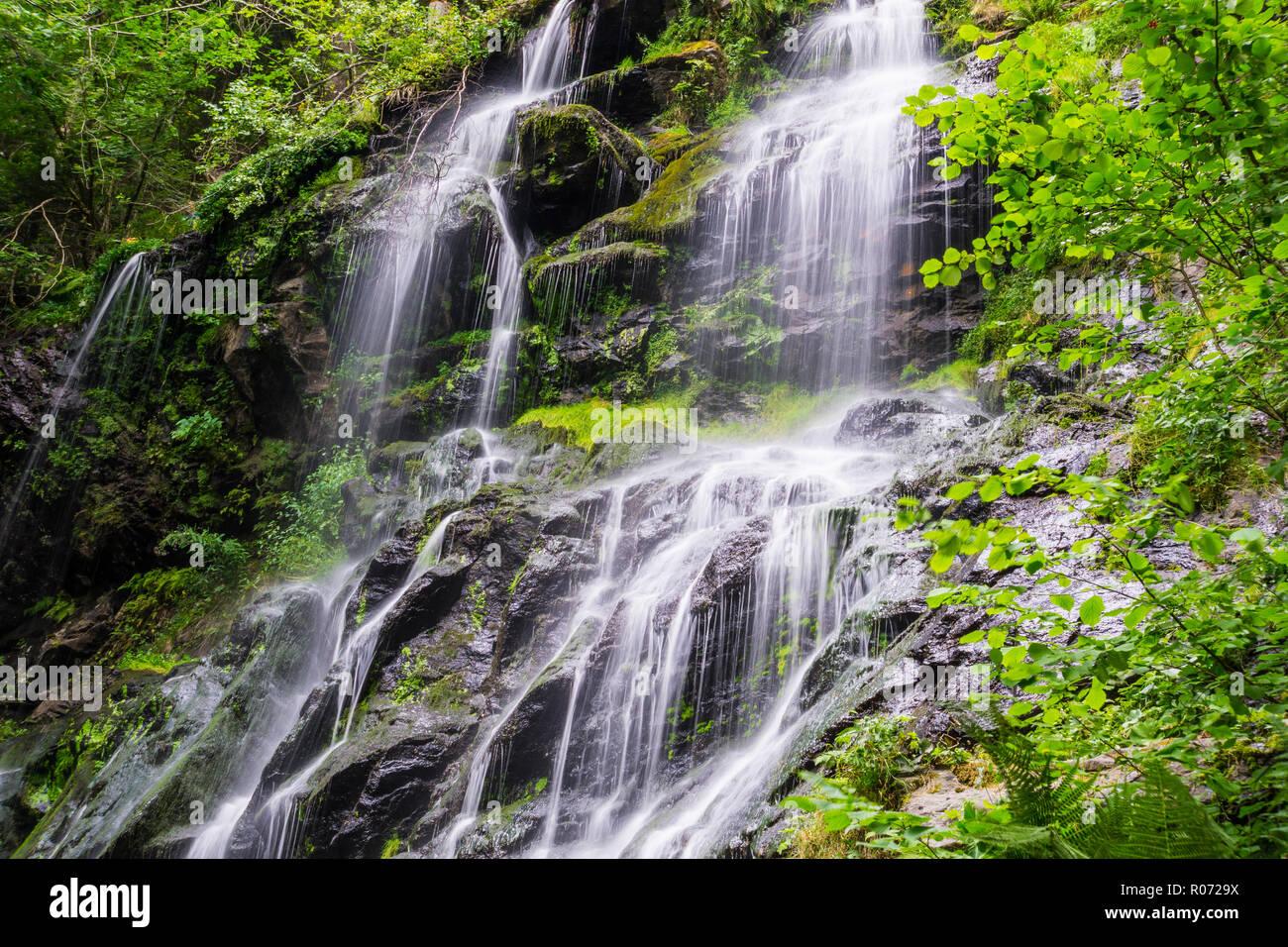 Germany, Zweribach waterfall near Simonswald in mystic black forest atmosphere - Stock Image
