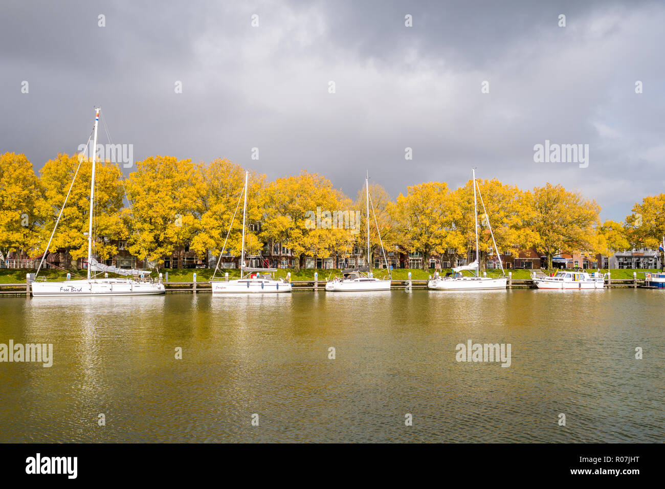 Autumn trees and sailing boats in old harbour of city of Enkhuizen, Noord-Holland, Netherlands - Stock Image